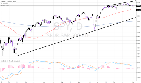 SPY: SPY - DRAGONFLY DOJI FOLLOWS HAMMER