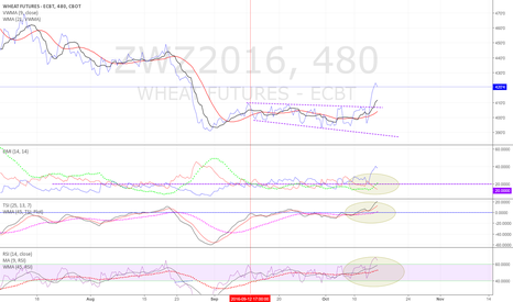 ZWZ2016: Wheat may be ready to begin a new trend up
