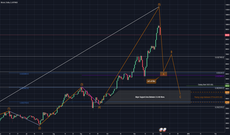 BTCUSD: Are you a HODLER? Hype turn into fear in the blink of an eye!