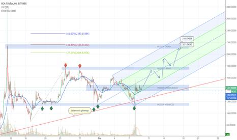 BCHUSD: BCH(BCC)/USD LONG