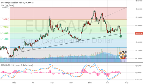 EURCAD: Possible bounce off 0.500 Fib Level and Daily Support trendline