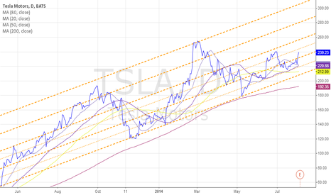 TSLA: TSLA Long Term Channel