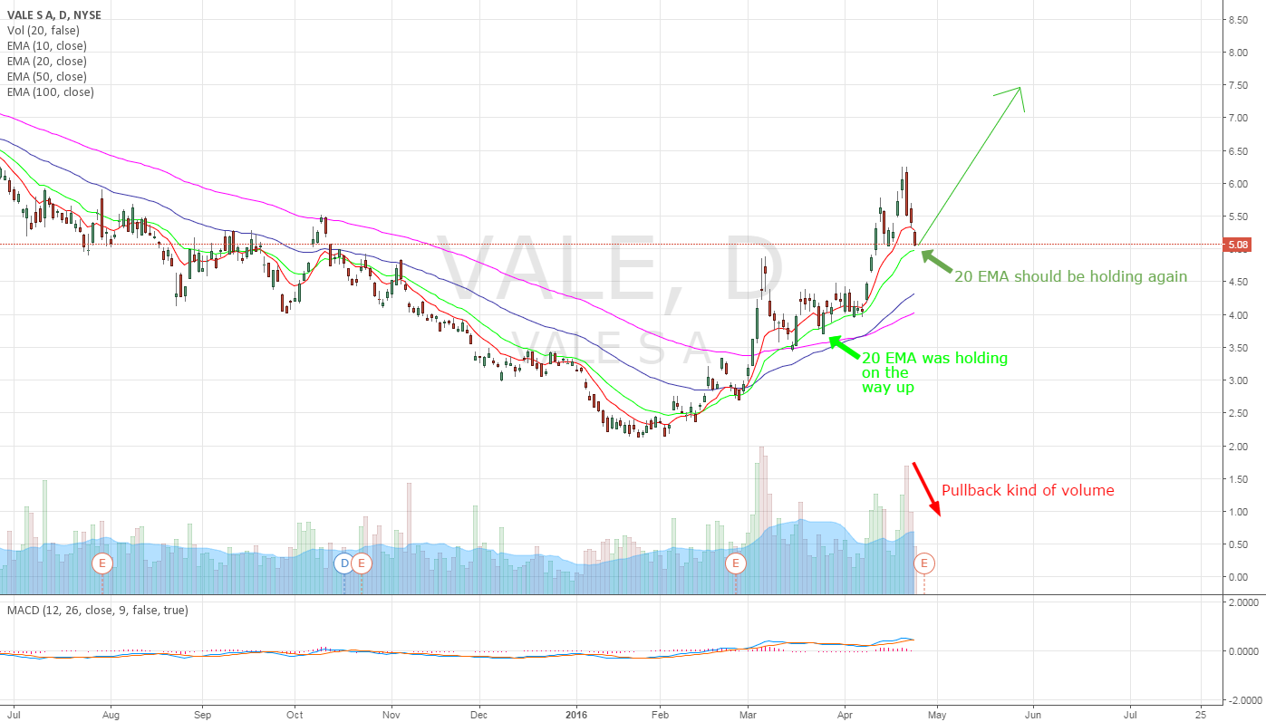 VALE - riding the bull
