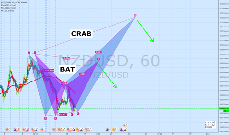 NZDUSD: NZDUSD 60 Minute Update   BAT CRAB