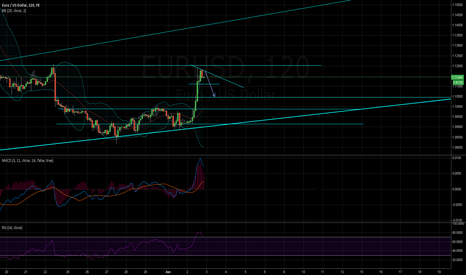 EURUSD: Short the top euro!