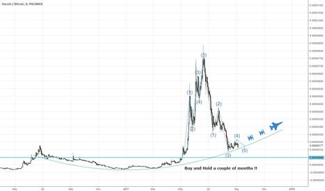 SCBTC: Sia coin perfect buy and hold for a portfolio !!