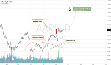 AAPL: Long On Apple, At Least That's How I See It