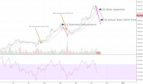 BTCUSD: BTC and BCH Fork-Related Market Psychology Hypothesis