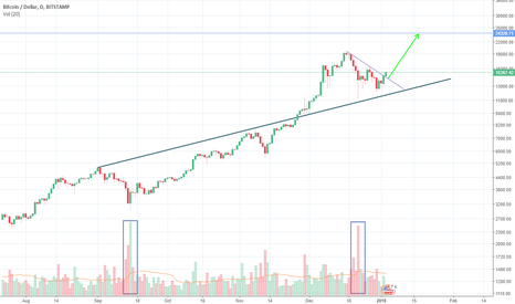 BTCUSD: Bitcoin: New Highs for a New Year!