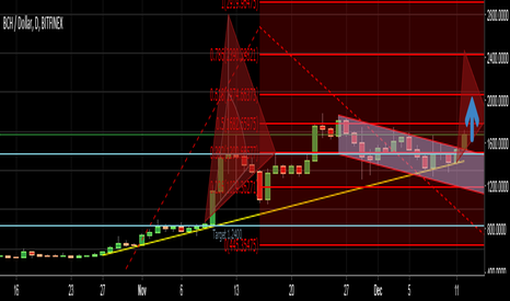 BCHUSD: btc,,, against    bcn,, is it ready to hold new all time highs