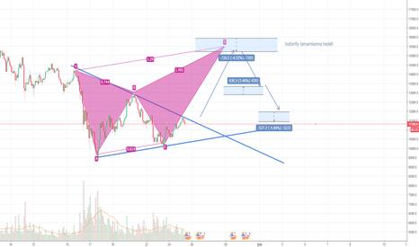 BTCUSD: BTC/USD-butterfly