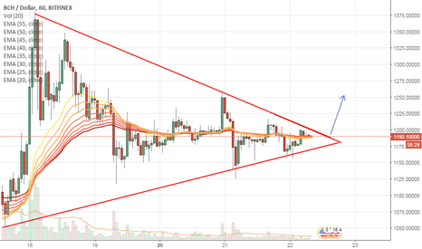 BCHUSD: Flag pattern on Hourly bitcoin cash