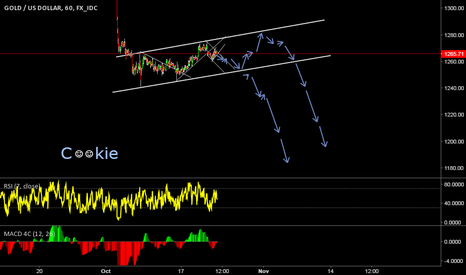 XAUUSD: possibe gold cookie???