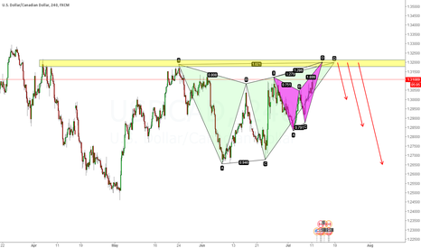 USDCAD: 2 BUTTERFLIES ARE DANCING TOGETHER