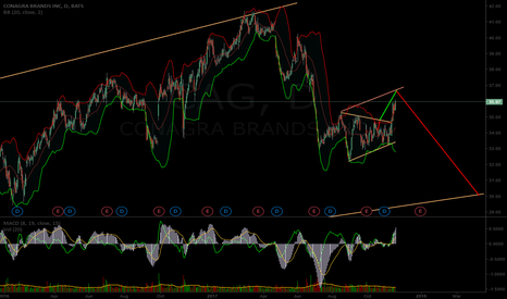 CAG: $CAG