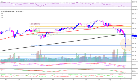 XBI: Biotech's finding support?