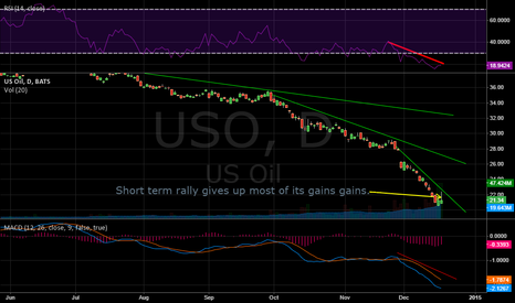 USO: OIL try's a relief rally. but gives up most of it's gain