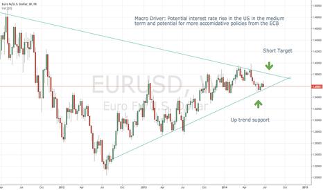 EURUSD: Shorting the EURUSD within 2-3 months