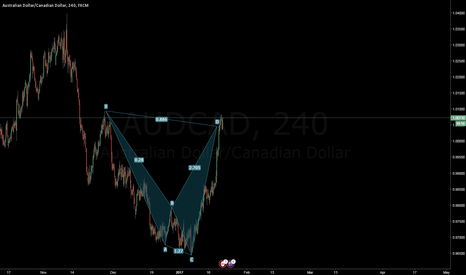 AUDCAD: AUDCAD - its time to short, i've found a shark