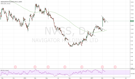 NVGS: Potential Long