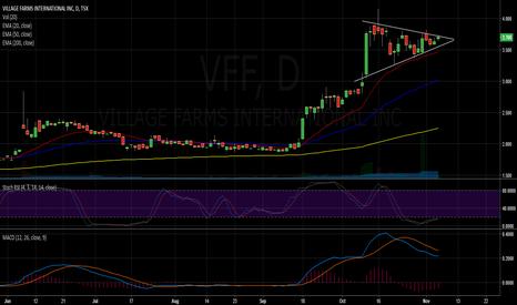 VFF: A cannabis play under the radar (VFF)