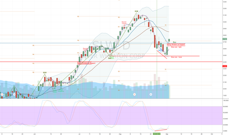 SLW: SLW - Reversal with Good Technicals