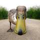 ducktank