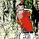 corneliusjohannesbarnard