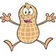Peanut-walnut