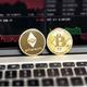 crypto01success