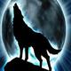 Rcwolf