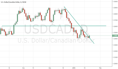 USDCAD: USDCAD: Death Cat Bounce towards 1.2600