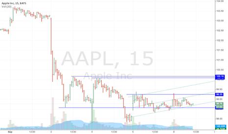 AAPL: APPL Long