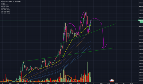 BCHUSD: BCH might be a H&S in this hype, target 2500-2700 dollar