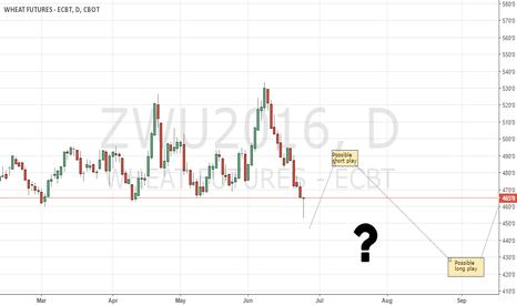 ZWU2016: Wheat CBoT still clueless