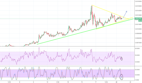 LSKBTC: Lisk to the moon? :O