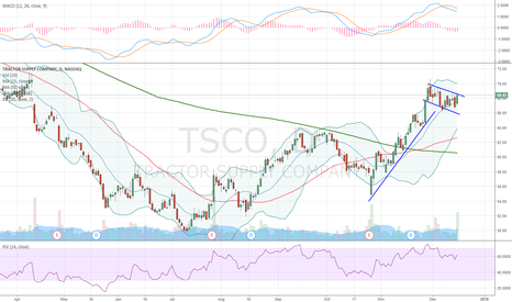 TSCO: Flagging