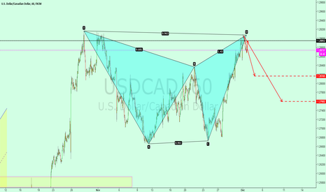 USDCAD: USDCAD looks at the empty gatley form
