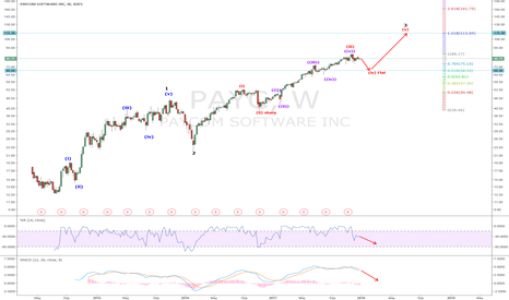 PAYC: PAYC: Wave 4 Correction Next