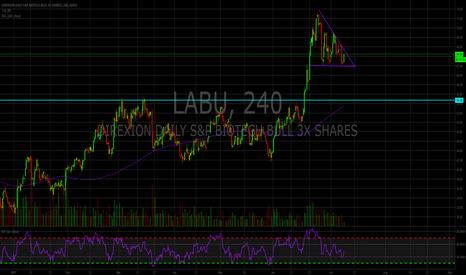 LABU: LABU consolidation