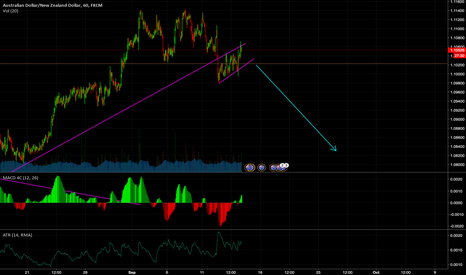 AUDNZD: Flag in the making