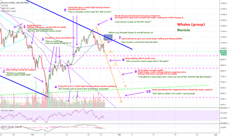 BTCUSD: Whales/traders Behavior Analysis - Trap in a trap, trapception