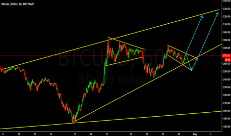BTCUSD: BTCUSD Possible Waves after August 1