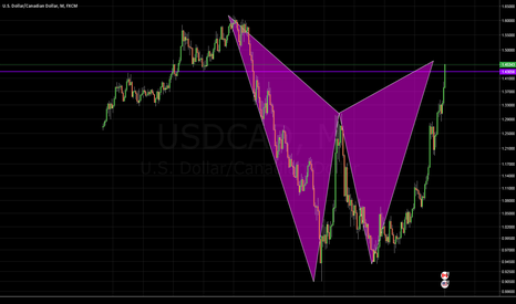USDCAD: Bear Bat @ Structure on the Monthly