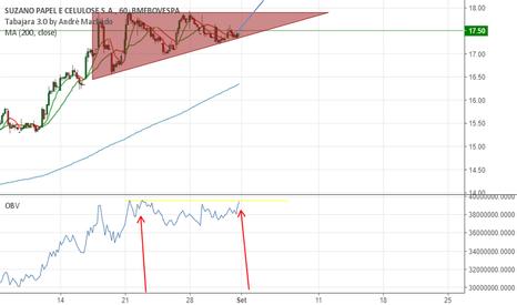 SUZB5 Gráfico de acciones