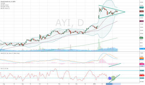 AYI: Possible AYI Breakout