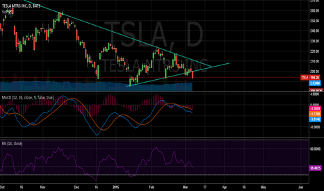 TSLA: TSLA prices collapses from the triangle range