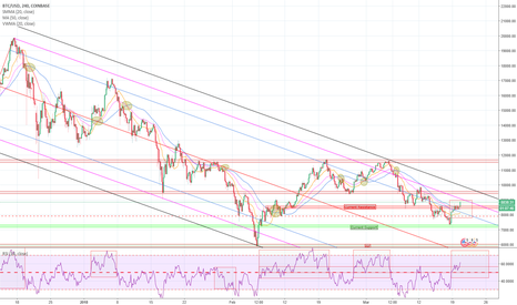 BTCUSD: The Bitcoin Bunny lays Golden Eggs to show us the way!