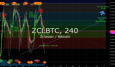 ZCLBTC: ZClassic BitcoinPrivate Buy the Dip and To the MOON