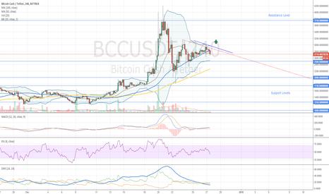 BCCUSDT: Bitcoin Cash Entry Level